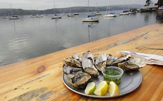 oysters_outdoors1