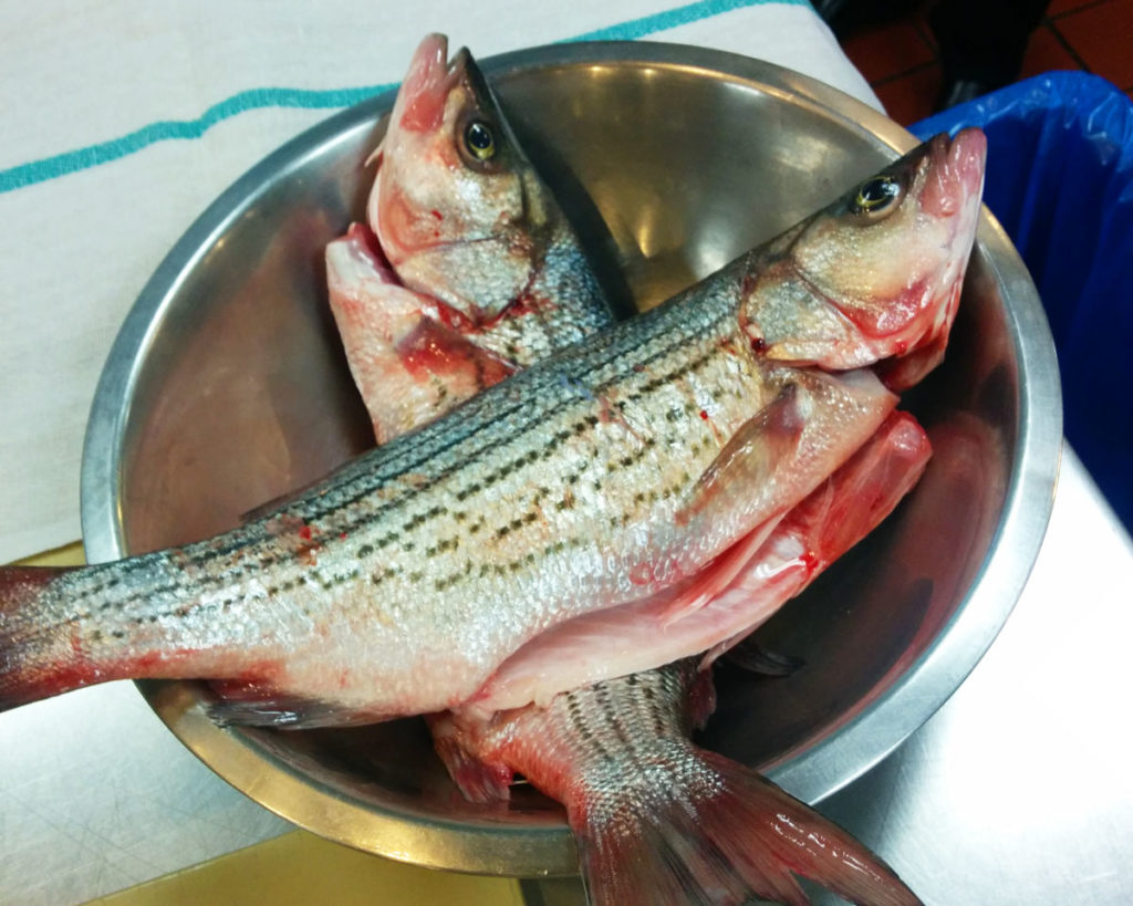 Good thing there s sauce how to butcher and cook whole for Bass fish cooking