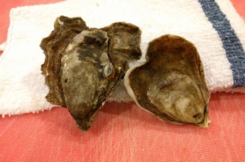 Heart-Shaped Oysters
