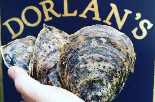 Oystergiving at Dorlan's Tavern & Oyster Bar